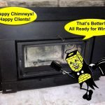 Wood Insert Cleaned by Mr Happy Chimney